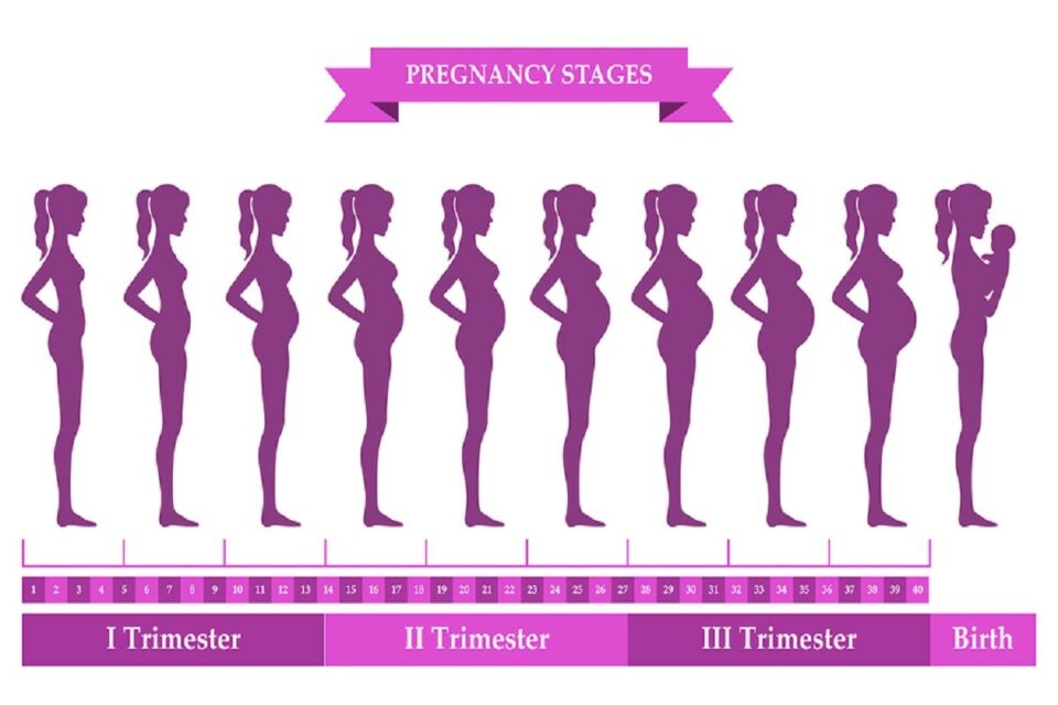 How Your Body Changes During Pregnancy